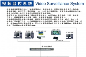 数字监控系统 Video Surveillance System